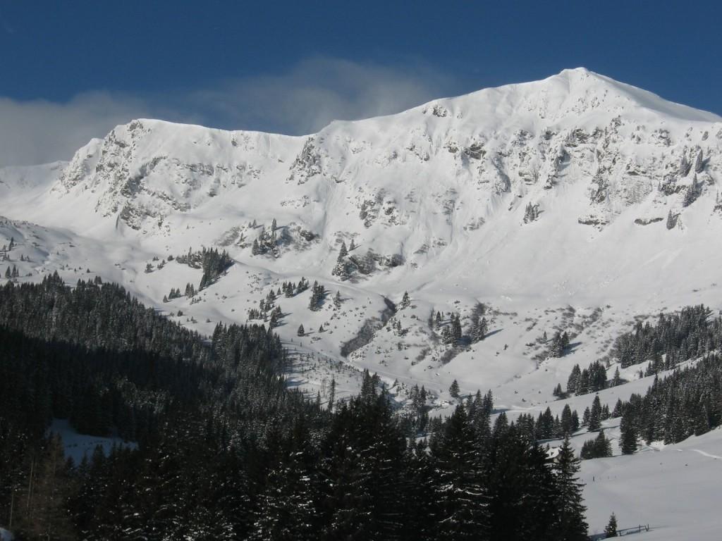 Pusterwald_018