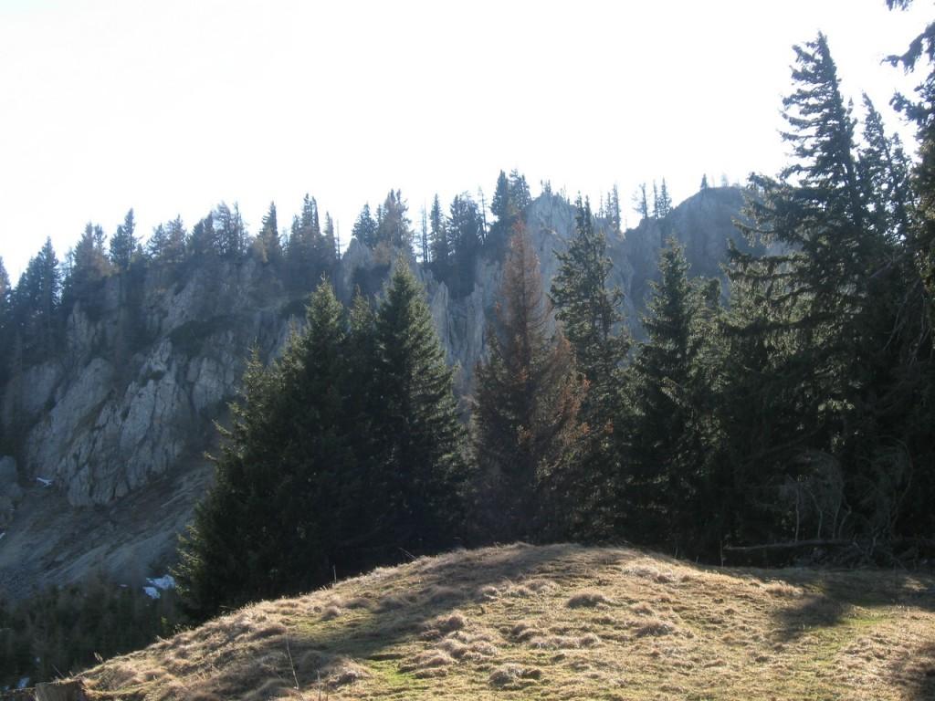 Kahlwandspitze_080