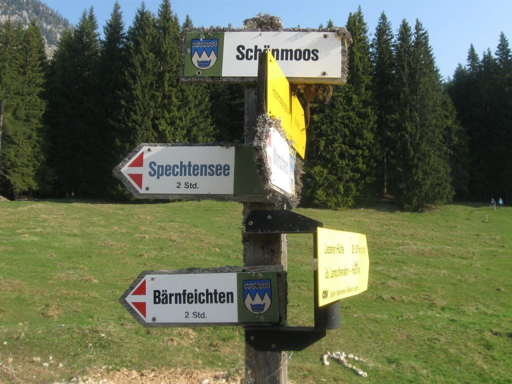 Hochtausing_003