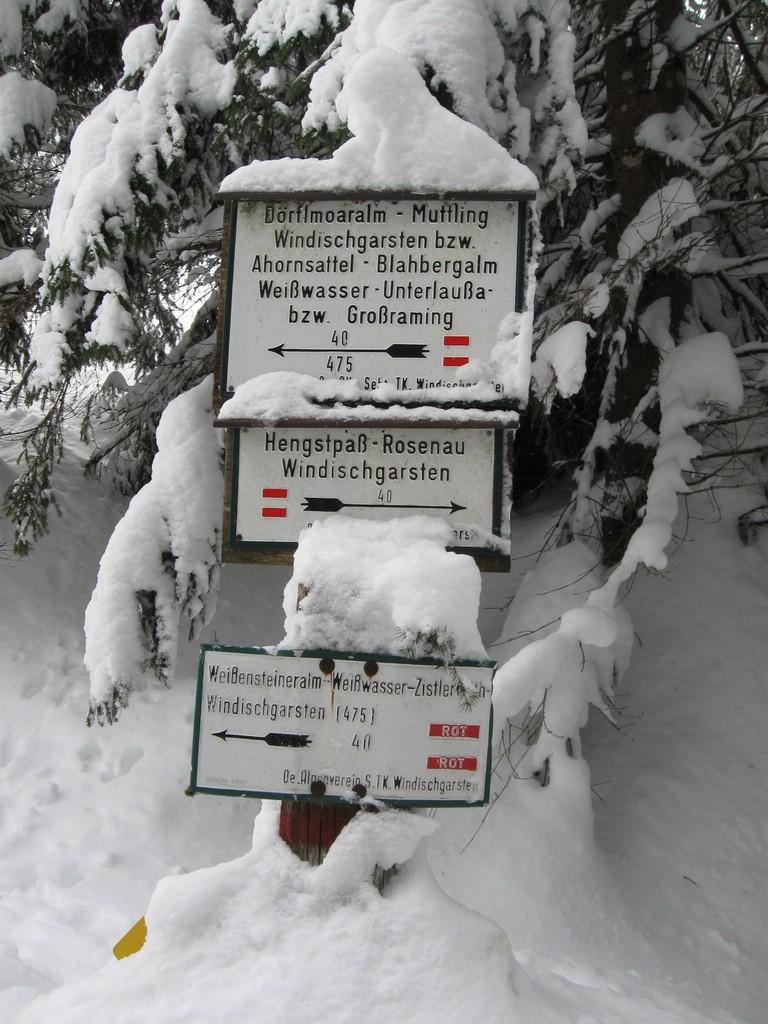 Zeitschenberg_012