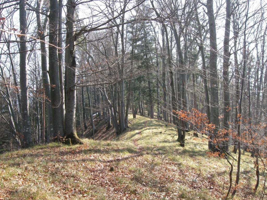 Huetterkogel_015