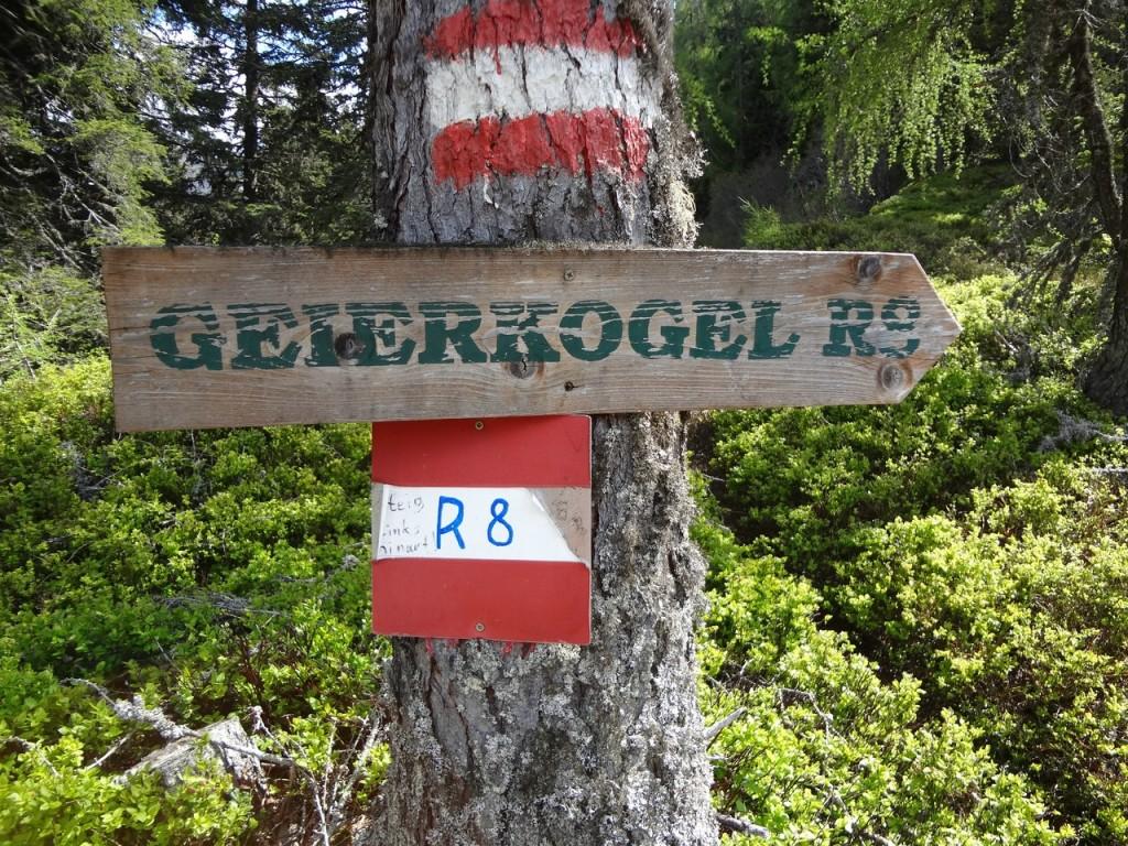 Geierkogel_138 (CC)