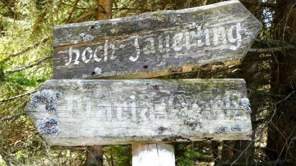 Jauerling_107 (CC)