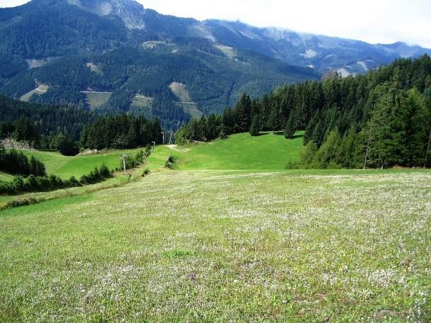 Kuehberg2005_003 (CC)