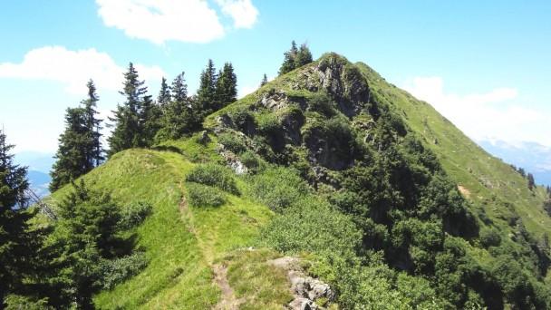 Schuettkogel_092 (CC)