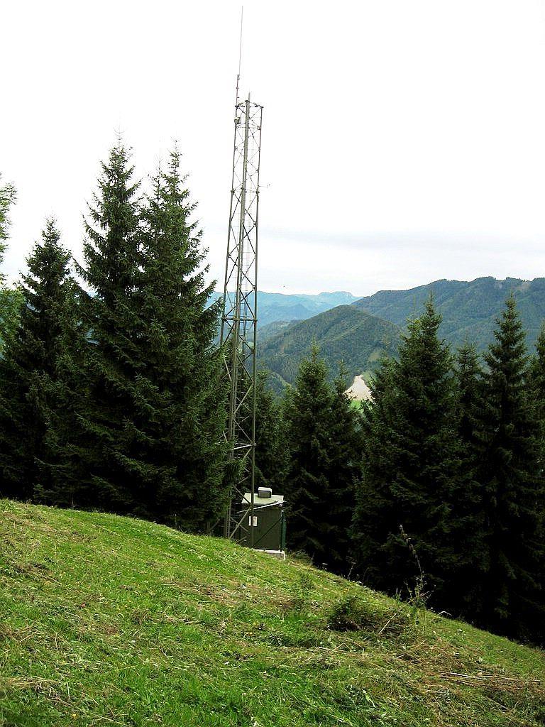 Schwarzenbergi_018 (CC)