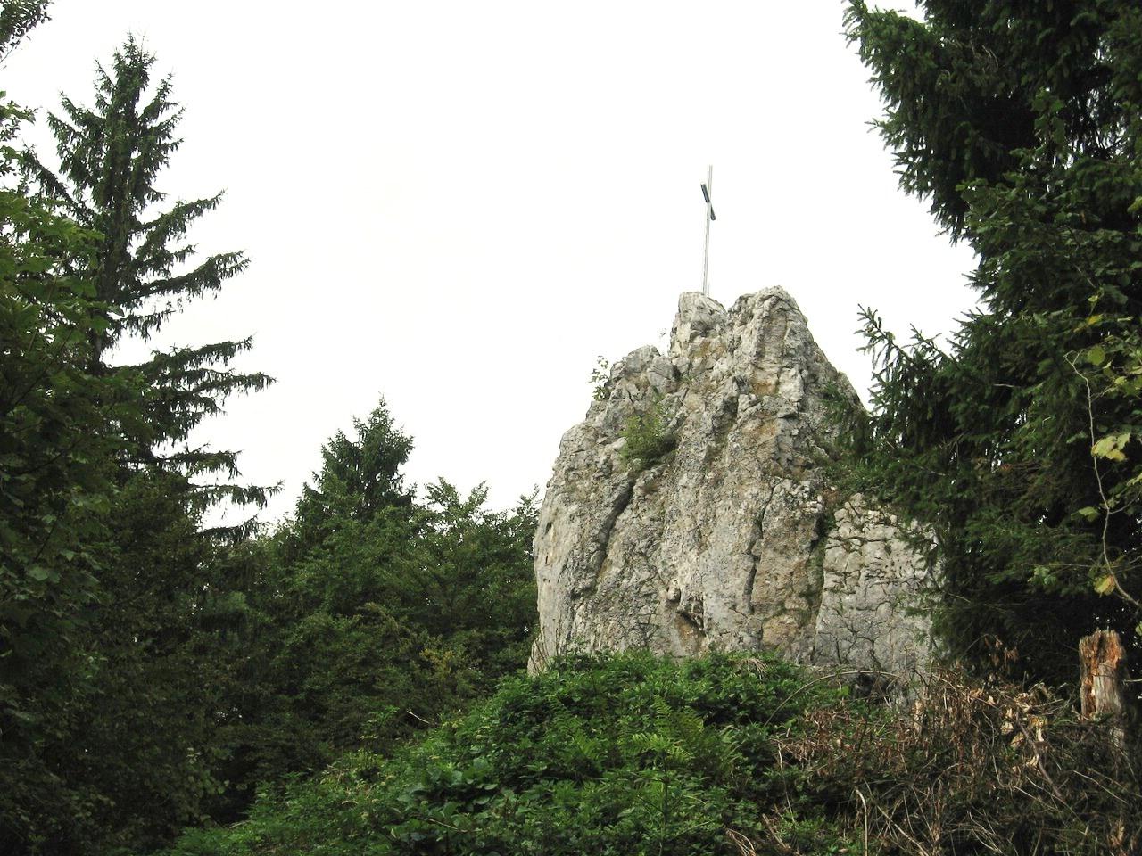 Schwarzenbergi_030 (CC)