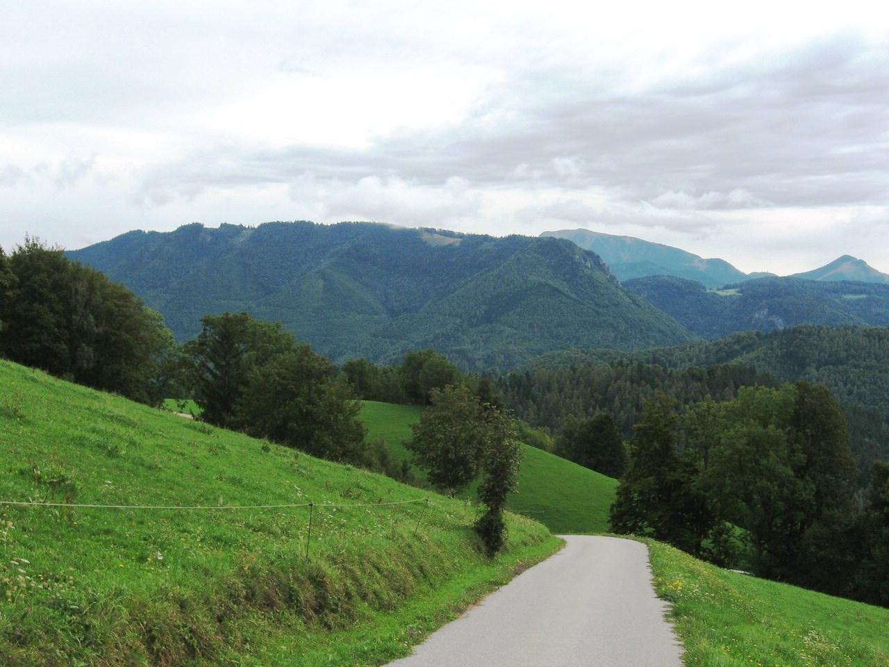 Schwarzenbergi_059 (CC)