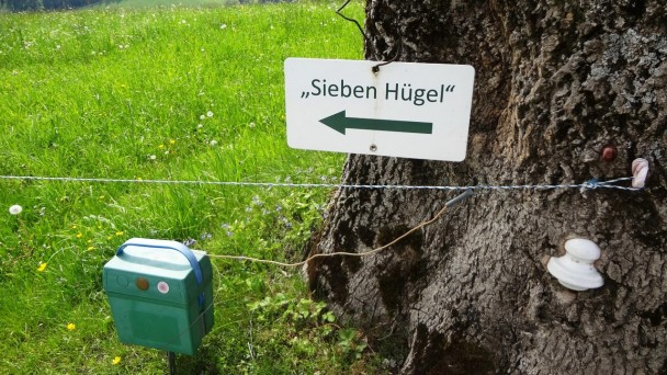 Siebenhuegel_061 (CC)