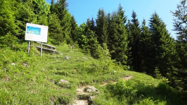 Schneckenwand_038 (CC)