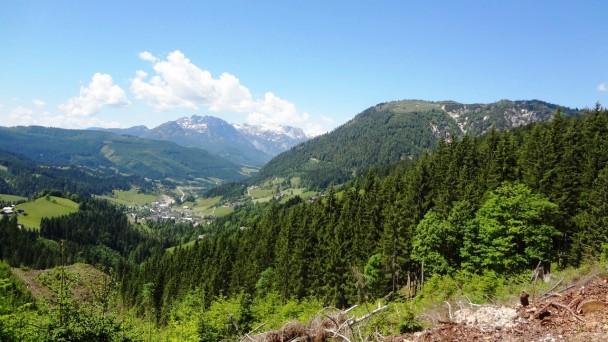 Schneckenwand_083 (CC)
