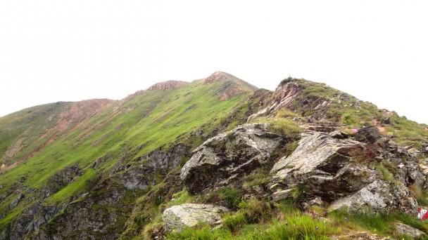 Rinsennock_071
