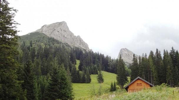 Schwarzenstein014