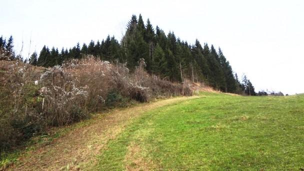 Schluchtenweg_ 011