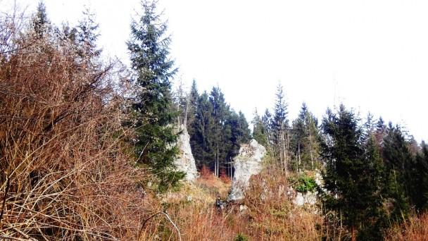 Schluchtenweg_ 013