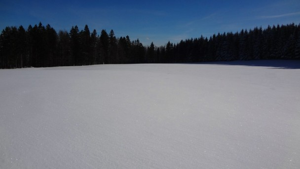 Schnabelberg15_ 055