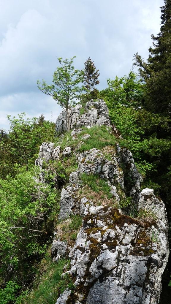 Reutkogel_ 029