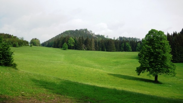 Reutkogel_ 091