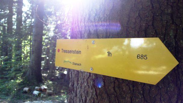 tressenstein_-008