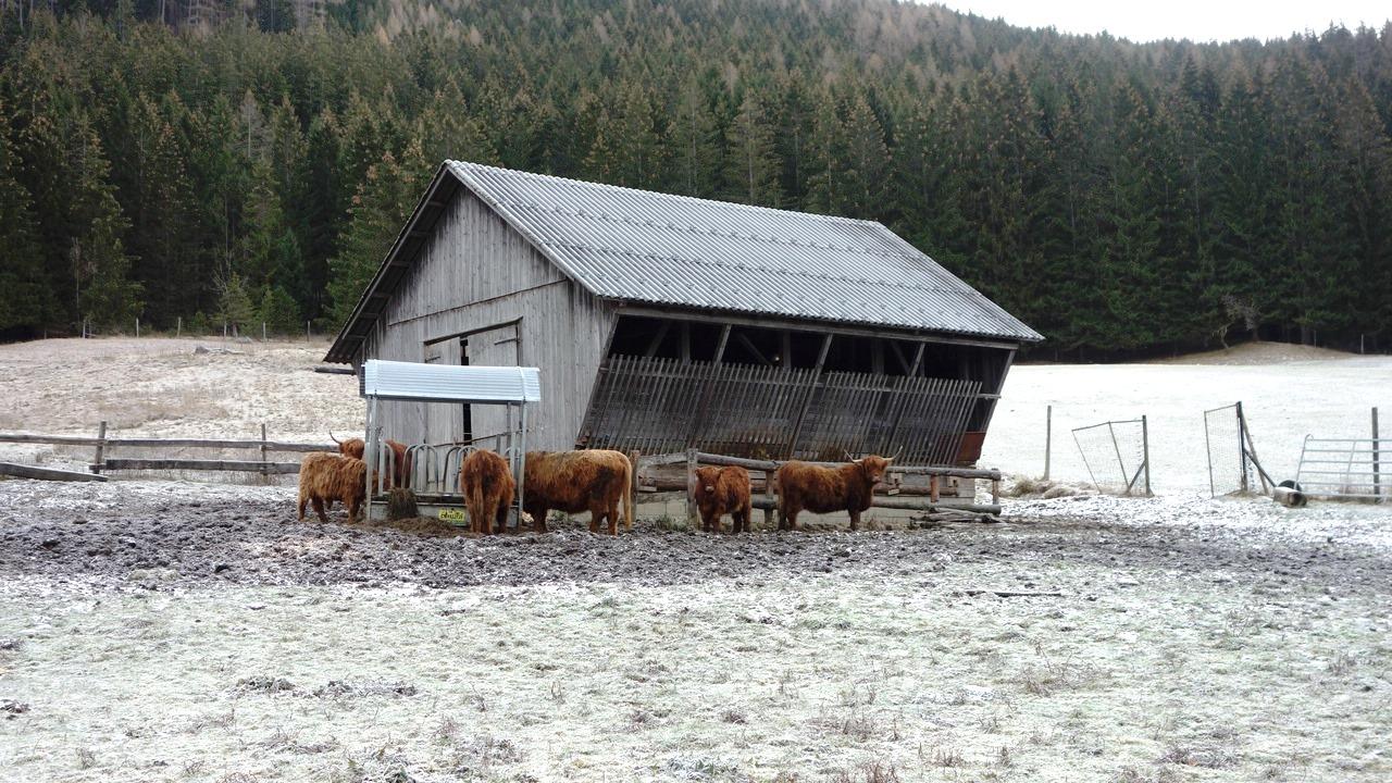 Berge ohne Mitlaut: die Akogeln - Akogel (1190m), Grou00dfer Akogel (1171m), Kleiner Akogel (940m ...