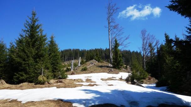 Taschelbach_ 032
