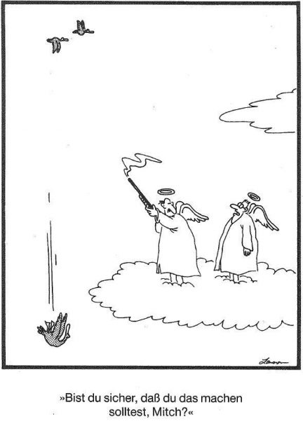 himmelsjaeger