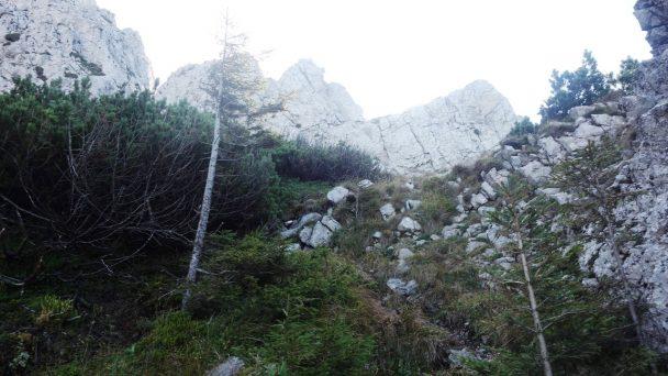 Stumpfmauer_ 058