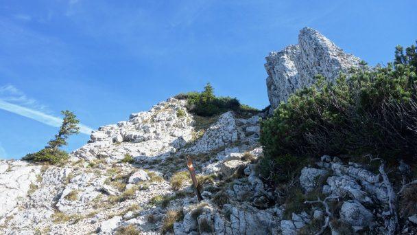Stumpfmauer_ 062