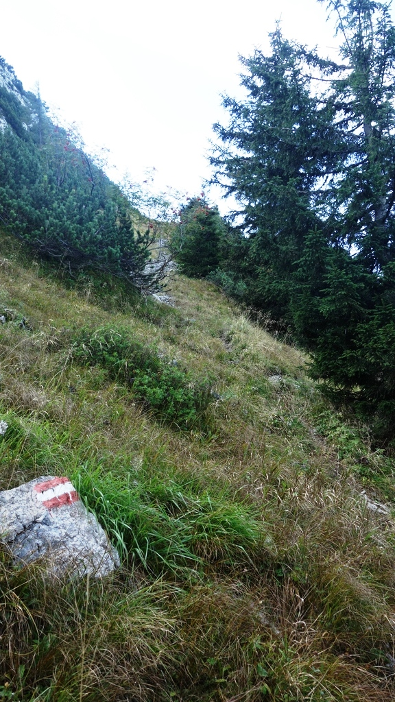 Stumpfmauer_ 065